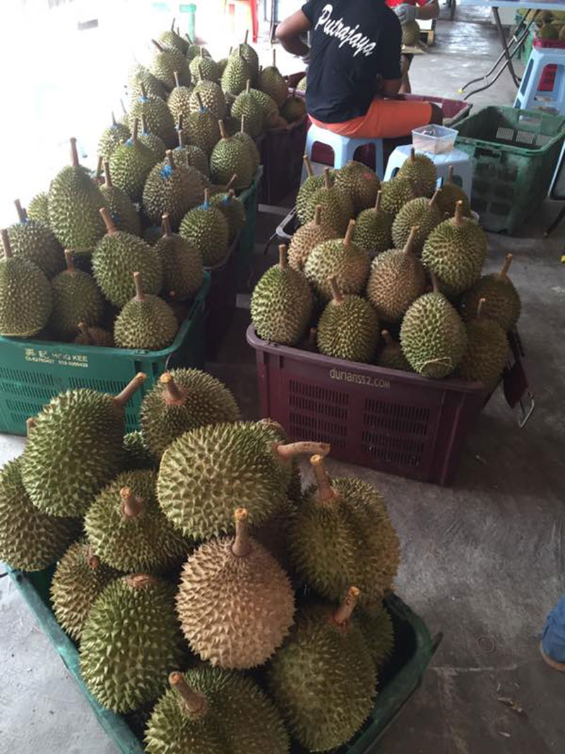 Durian 002