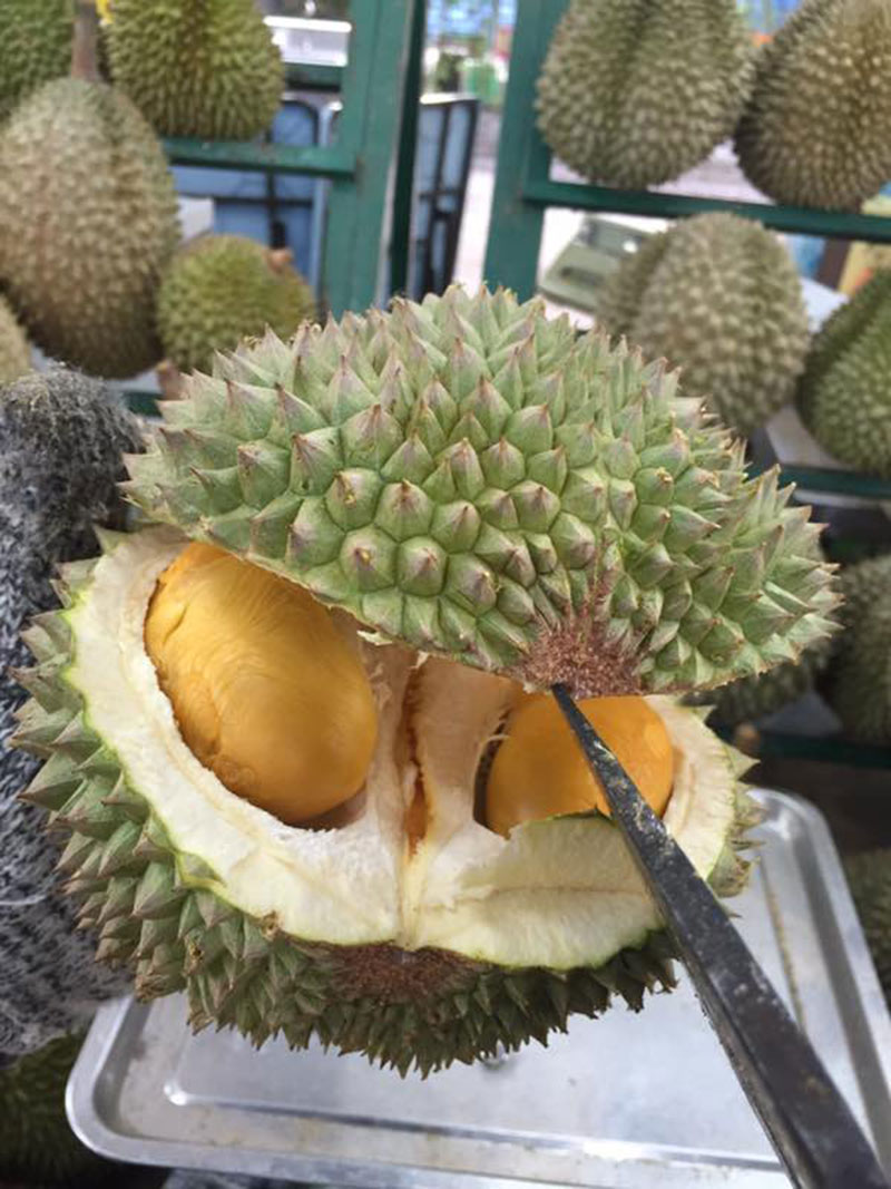 Durian 006