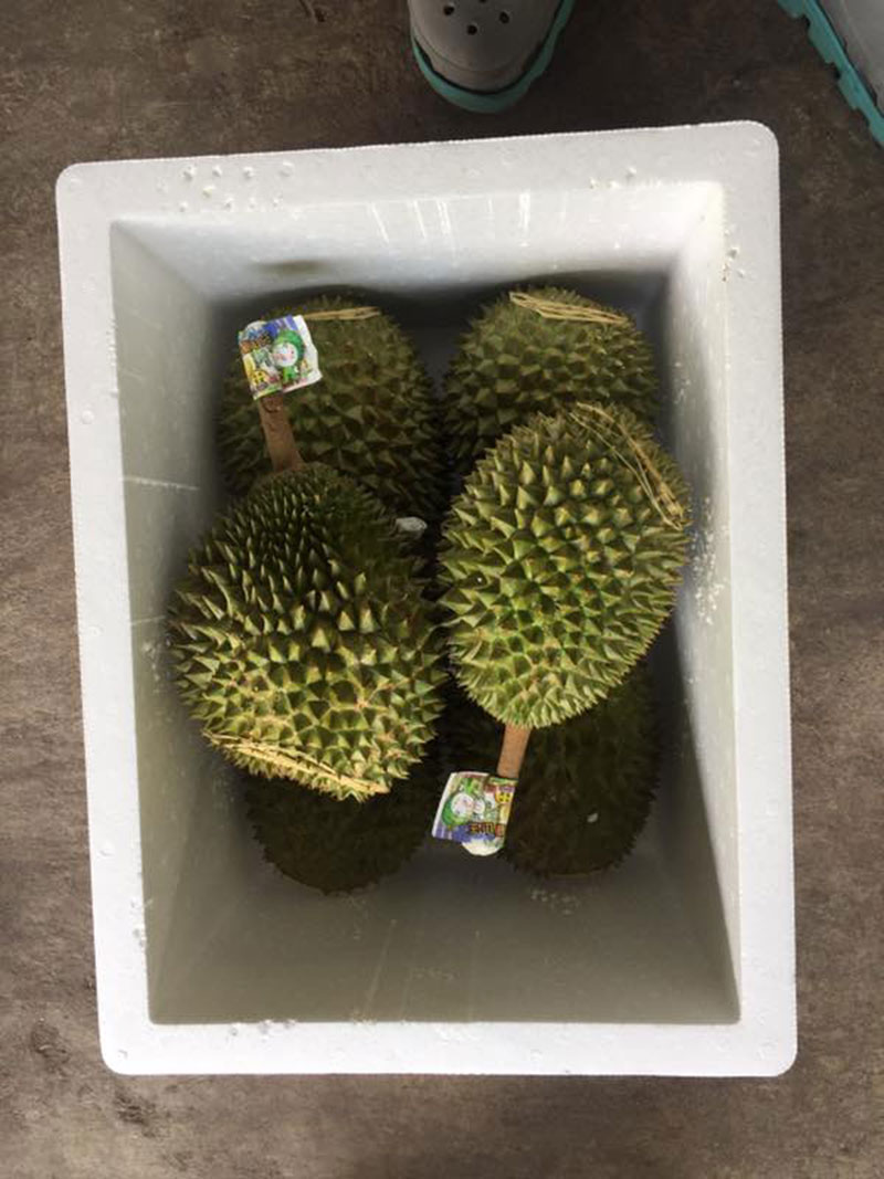 Durian 018