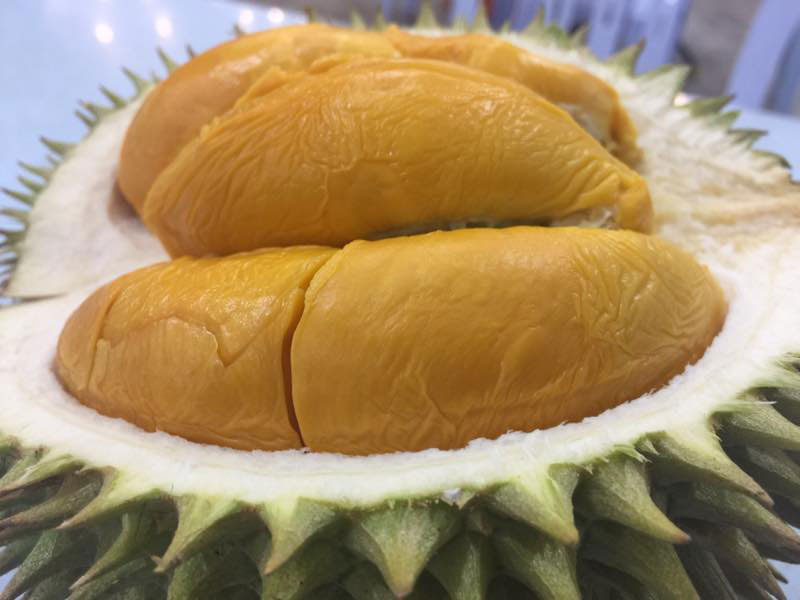 Durian 020